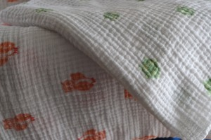 Aden and Anais blankets